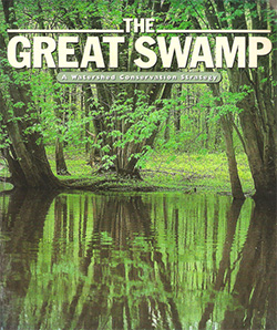 The-Great_swamp-Nature-Conservancy